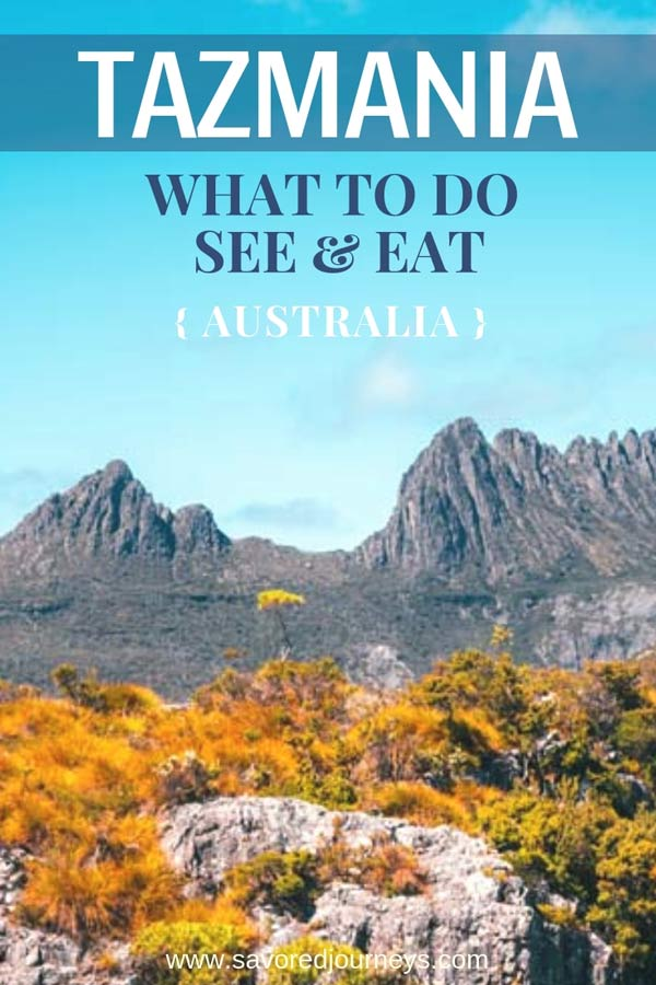 Tazmania Travel Guide: What to do, see and eat in Tazmania Australia