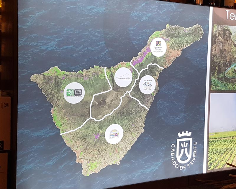The 5 wine regions of Tenerife
