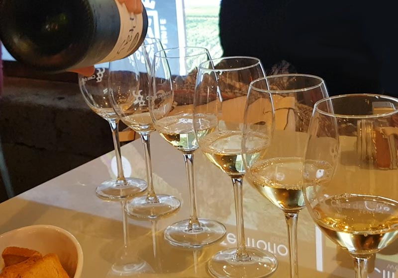 Wine tasting at Casa del Vinos