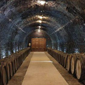 Grof Degenfeld Winery