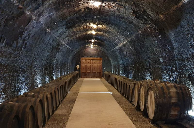 Grof Degenfeld Winery - one of the largest wineries in Tokaj