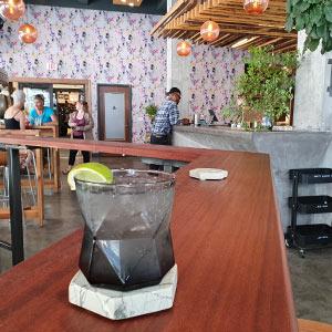 Amalga Distillery gin & tonic