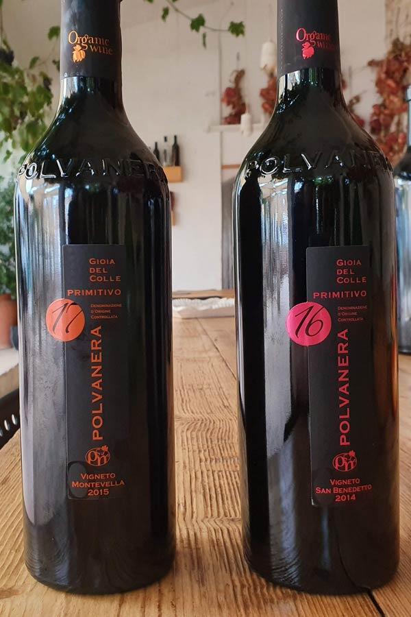 Polvanera Wines in Puglia Italy