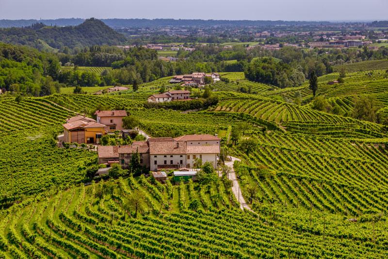veneto wine region