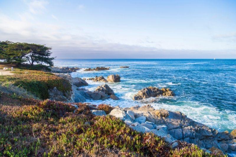 Monterey beach views