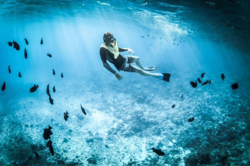 person snorkeling